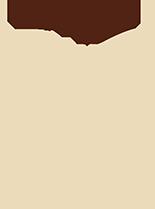 barbudinho-bege